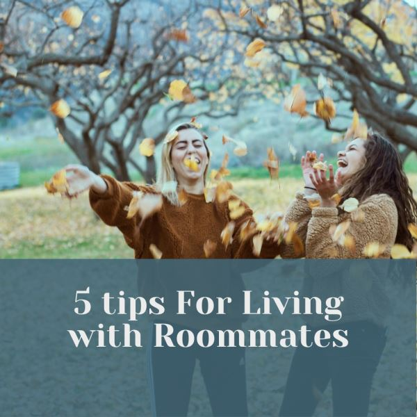 Photo of 5 Tips for Living with Roommates